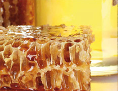 Honey, jams and oils